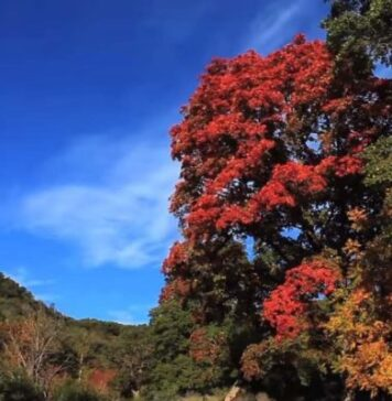 Leakey in the Fall - Texas Hill Country Beauty That's Yet Unsurpassed